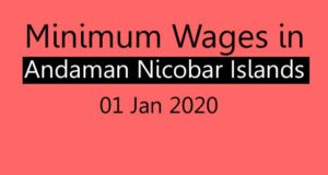 Minimum wages in Andaman Nicobar Islands 01 Jan 2020