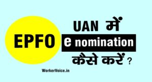 e nomination in epf online kaise kare